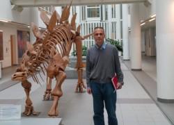 До стегосаурусот во холот на Факултетот за науки за Земјата, географија и астрономија (во чии рамки е Одделот за кристалографија и минералогија)